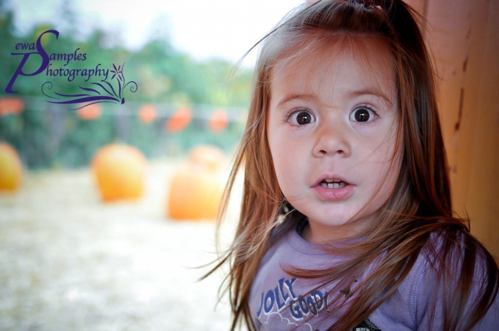 ewa samples, pumpkin patch, kids photography 1, san jose