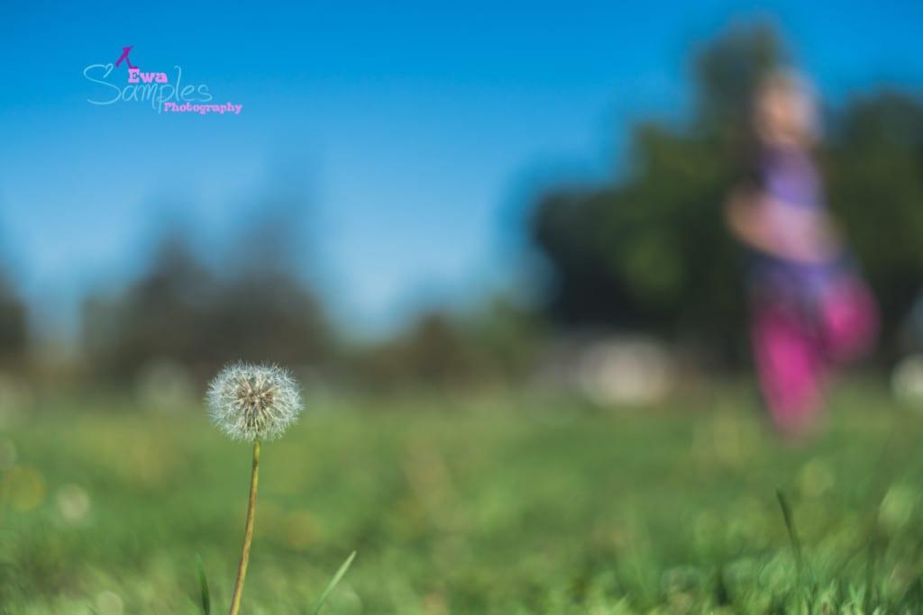 lifestyle_family_session_los_gatos_ewa_samples_photography-18