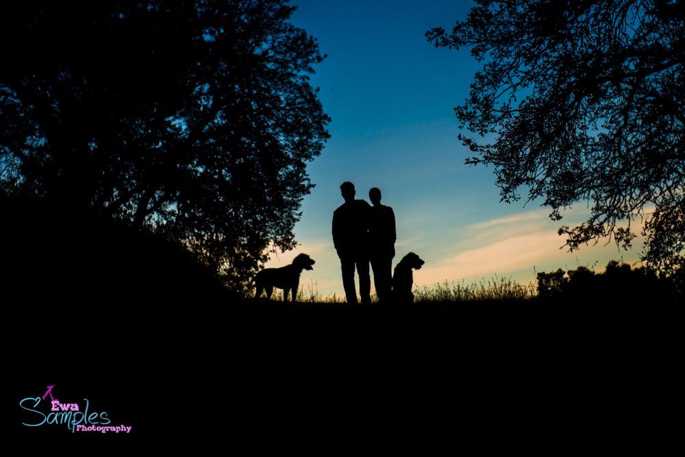 dogs_portraits_ewa_samples_photography_san_jose-5