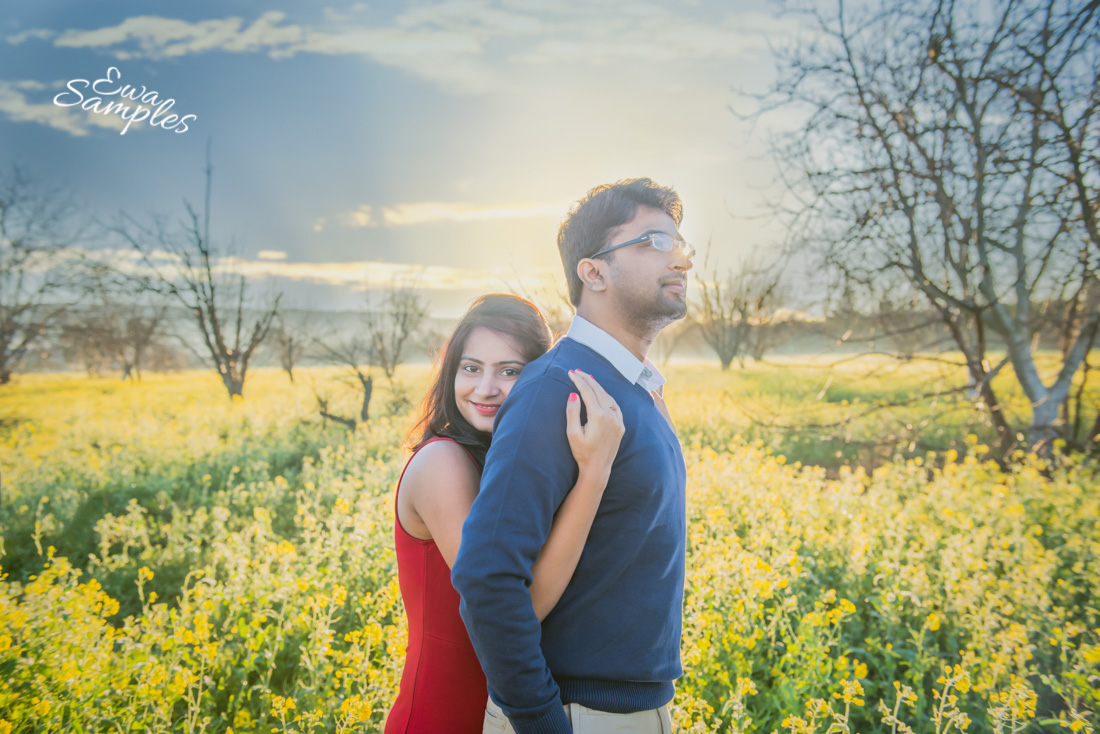 Mustard Fields _Mini_Session_Ewa_samples_Photography-1