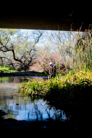 coyote creek trail morgan hill ewa samples photography