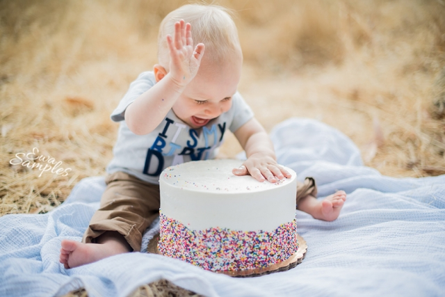 saratoga smash cake session  _ Ewa Samples Photography