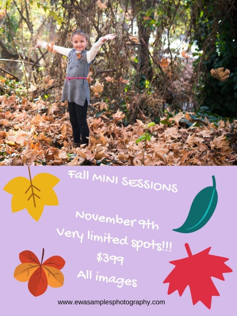 Fall MINI SESSIONS November 9th Limited spots!!! $399 All images (1)